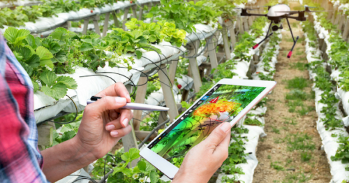 Growing Agritech – Not What You Might Expect