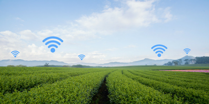 CropX: From the Internet of Things to the Internet of Soil