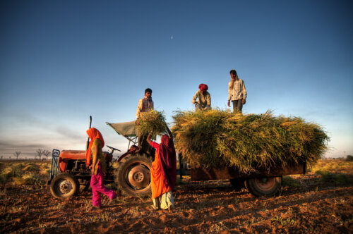 India-Israel: Growing Challenges and AgriTech Solutions