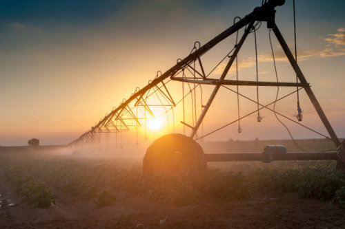 Current Innovation in Israeli AgriFood-tech – Part I